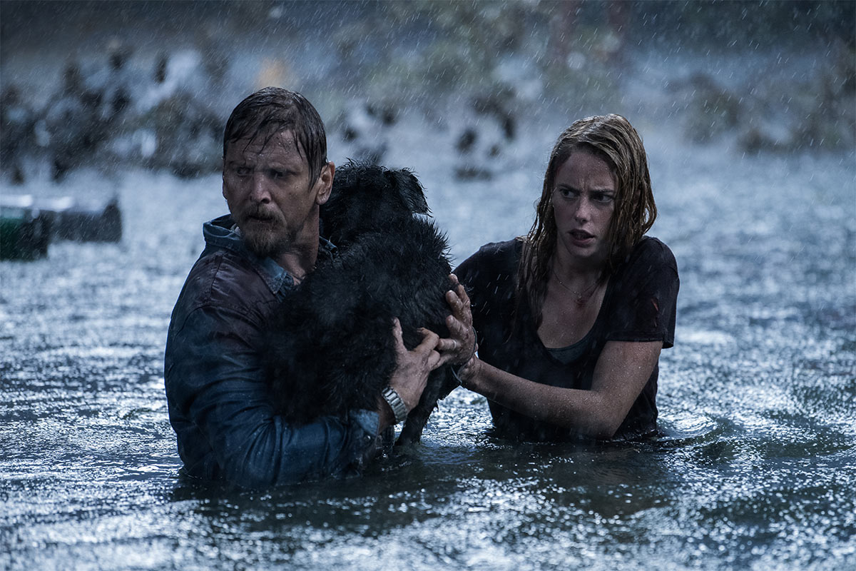 Haley (Kaya Scodelario) and Dave (Barry Pepper) trying to save a dog .. and themself